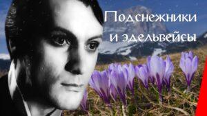 ПОДСНЕЖНИКИ И ЭДЕЛЬВЕЙСЫ Русский Кино, Приключения, 1982